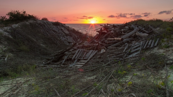 VideoHive Sunset on the Sea and Dunes Covered with Logs 19104720