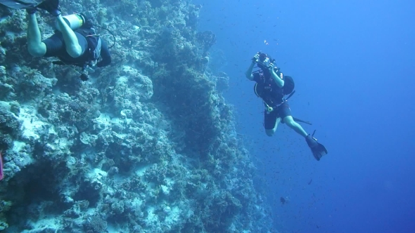 VideoHive Diver Swims at the Depth 19111260