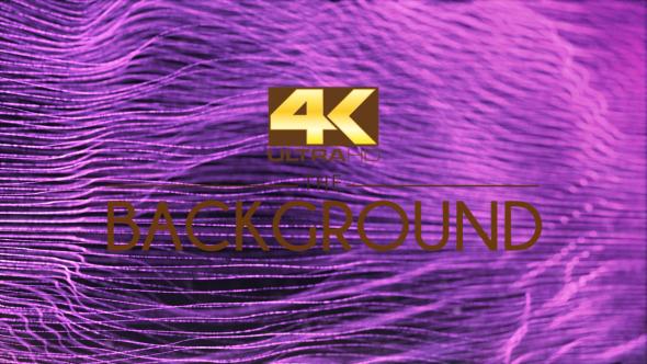 Download Purple Elegant Lines nulled download