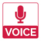 Voice - Event PSD Template