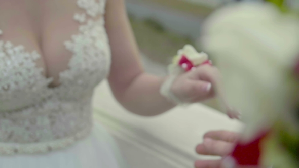 VideoHive View of Touching Hands of Newlyweds 19126129