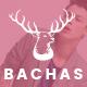 Bachas - DRAG & DROP Multipurpose Responsive Shopify Theme