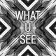 What-U-See