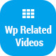 Wp Related Videos - For Self Hosted Wordpress Videos