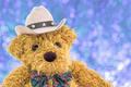 Close up cowboy teddy bear