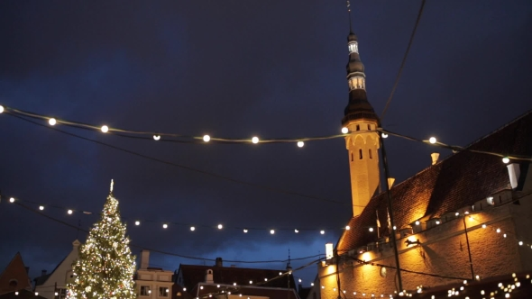 Christmas Tree at Old Tallinn Town Hall Square