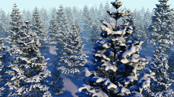 Download Fly Over Snowy Forest  nulled download