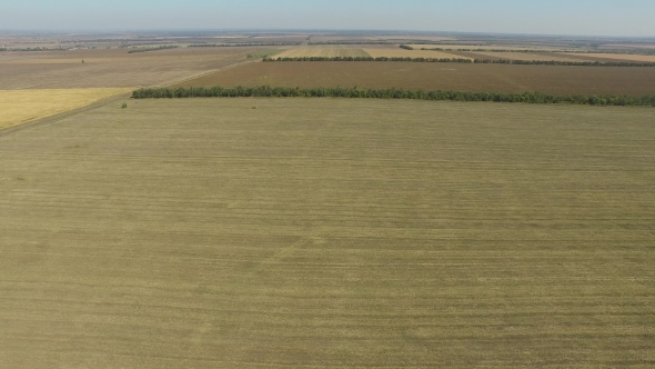 VideoHive Endless Fields After the Harvest Wheat Crop Aerial View 19158297
