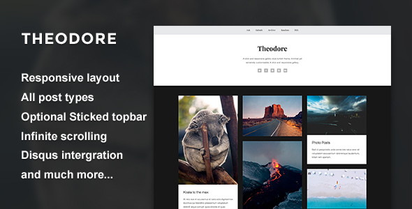 Theodore - A Responsive Gallery Theme