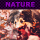 Nature Actions XII