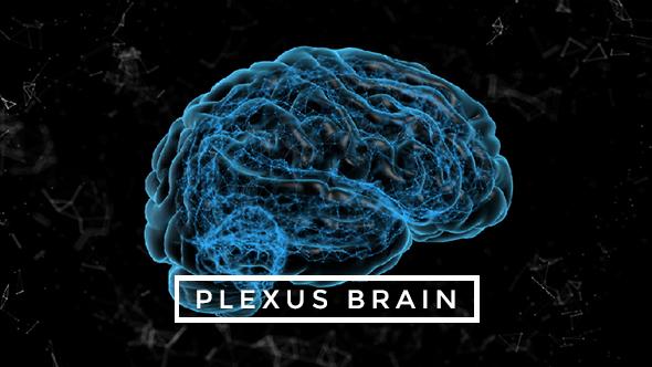 Download Plexus Brain Rotation #5 nulled download