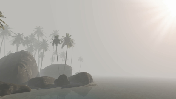 Download Morning Fog and Tropical Island with Palms nulled download