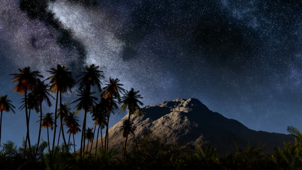Download Stars and Silhouetted Palm Trees nulled download