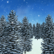 Christmas Winter