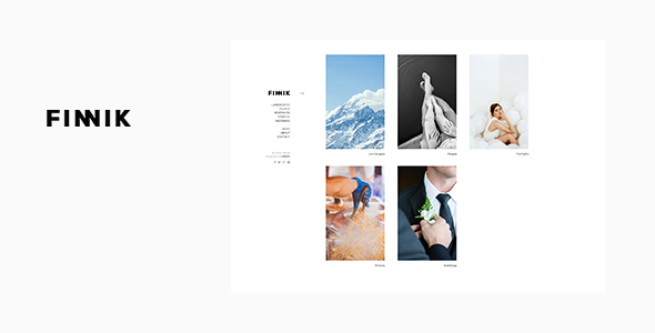 Download Finnik - Minimal WordPress Theme for Photographers nulled download