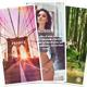 Albums Stripes | Gallery Module for Gmedia plugin