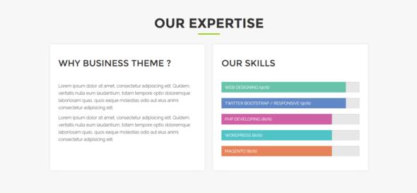 Alina - One Page Responsive HTML5 Portfolio Template