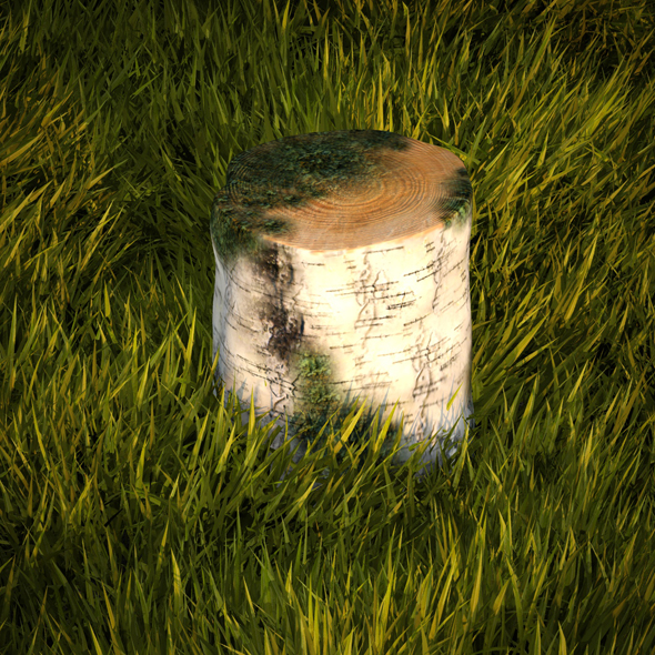 3DOcean Birch stump with moss 19203580