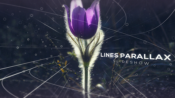 Lines Parallax Slideshow (Special Events)