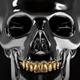 Skull Grillz PSD CD Mixtape Cover Template