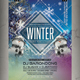 Winter Party Flyer / Poster