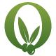 Olives O Letter Logo