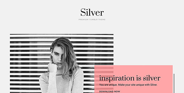 Silver Tumblr Theme