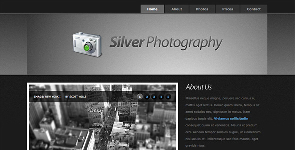 ThemeForest Silver Photography Photo Template 72801
