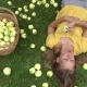 Young Woman Lie on Grass in Orchard and Eat Juicy Apple