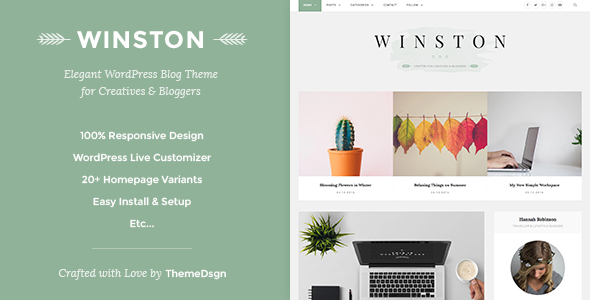 Responsive WordPress Blog Theme - Winston