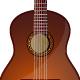 Acoustic Guitars Instrumental