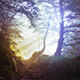 10 Fog Lightroom Presets