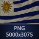 Background Flag of Uruguay