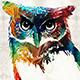 Motion-Owl