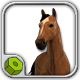 Wild Horse CG