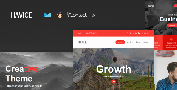 Havice Mail - Responsive E-mail Template + Online Access