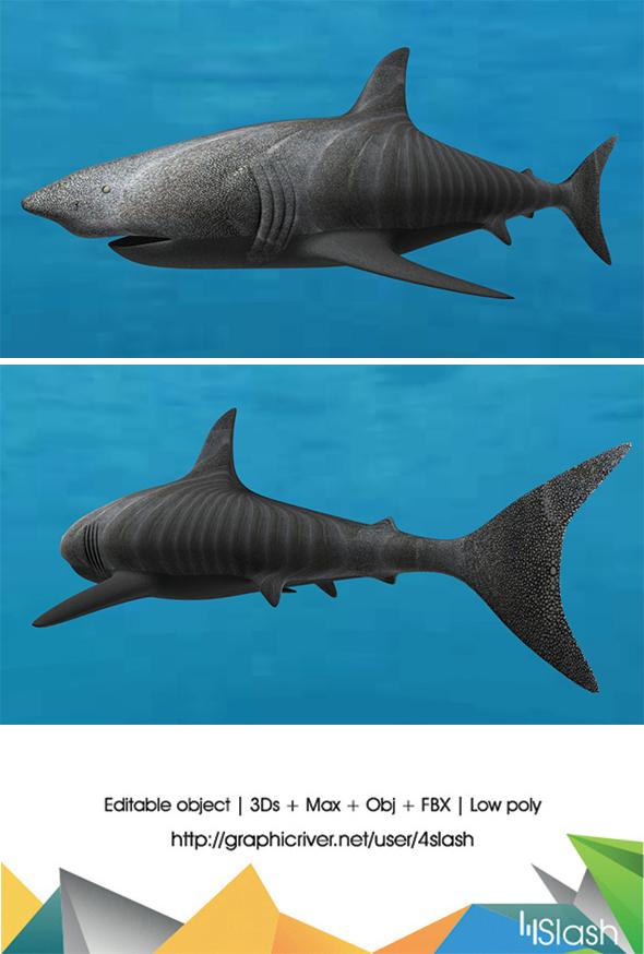 3d Shark - 3DOcean Item for Sale