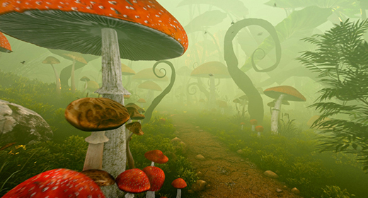 MUSHROOMS AND FAIRY FOREST
