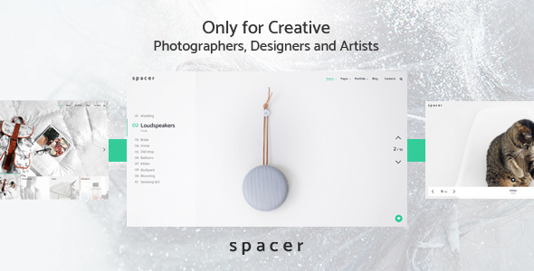 Download Spacer - Photography Portfolio WordPress Theme nulled download