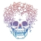 Colorfull Skull and Flower Headdress