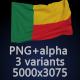 Flag of Benin - 3 Variants