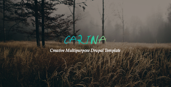 Carina - Creative Multipurpose Drupal 8 Template