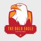 Multi purpose Eagle Logo