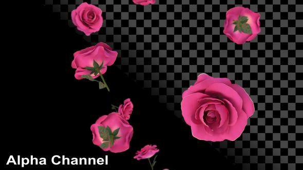 VideoHive Roses Falling 19277681