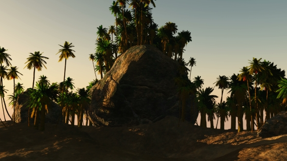 VideoHive Palms in Desert at Sunset 19277692