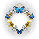 Jewelry Banner with Blue Butterflies