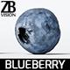 Blueberry 001