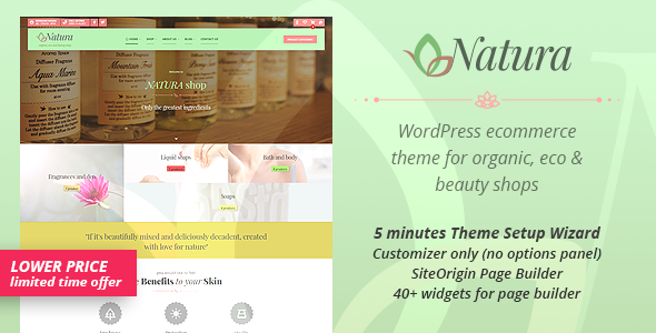 Natura - WP Theme for organic, eco and beauty eCommerce enabled websites