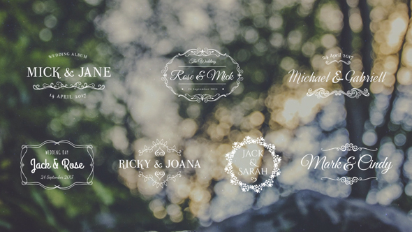 VideoHive Lovely Wedding Titles Vol 5 19288063