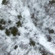 Aerial Footage. Flying Over Winter Forest